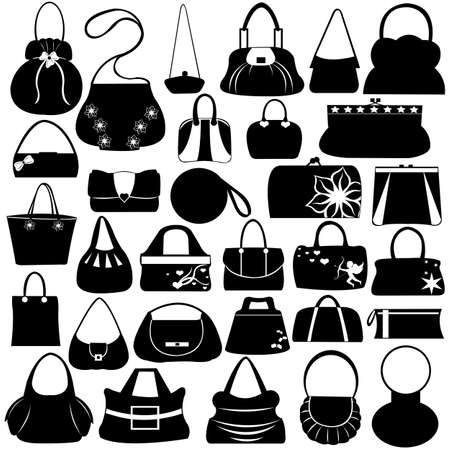 Female purse set isolated on white Ilustrace