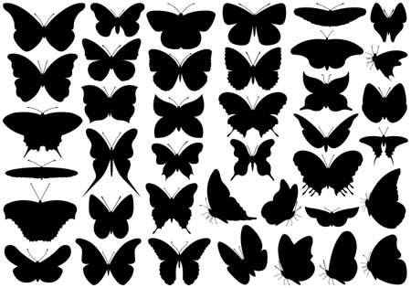 butterfly silhouette: Butterfly set isolated on white Illustration