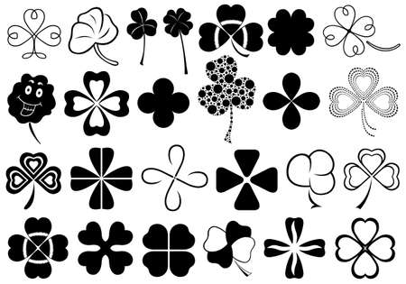 four month: Set of different clovers set isolated on white