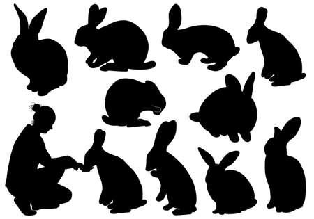 silhouette lapin: Ensemble de différents lapins isolés sur fond blanc