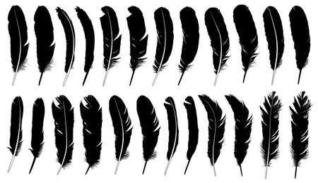 Set van verschillende veren op wit wordt geïsoleerd Stock Illustratie