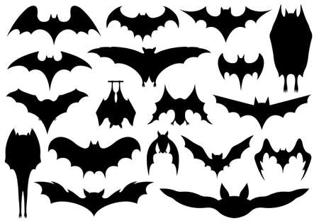 Set of different bats isolated on white 向量圖像