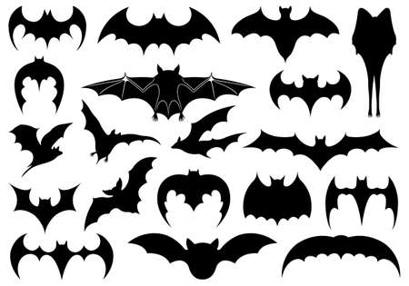 bat: Illustration of different bats isolated on white