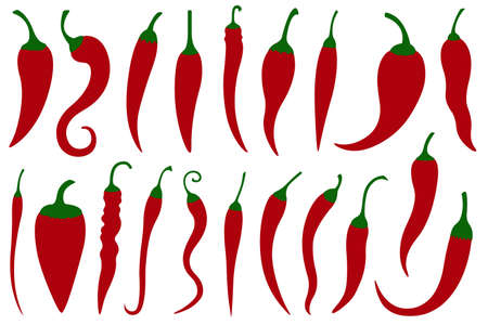 Set of different hot red chili peppers isolated on white Illustration