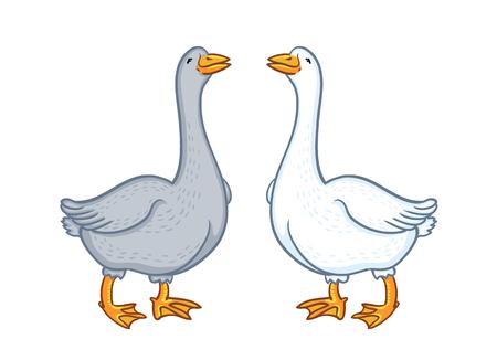 Aves de corral de gansos, animales de granja Ilustración de vector