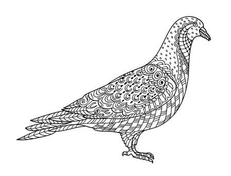 Drawing dove, for coloring book for adult or other decorations. Black and white version illustration