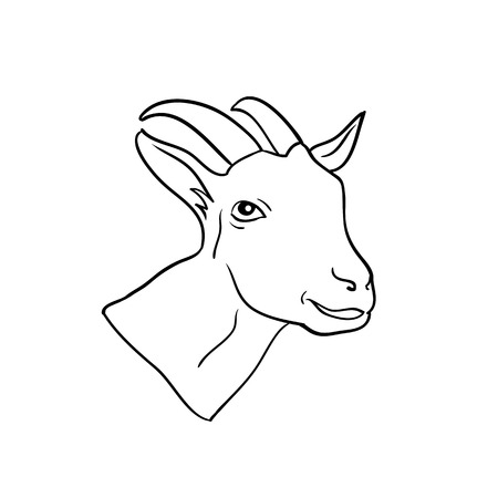 Head Goat isolated, animal drawn in line Ilustração