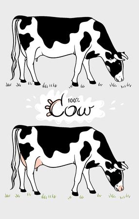 Vache. Vache mange de l'herbe. Vache isolée, ensemble d'éléments