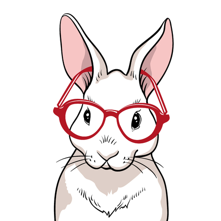 Rabbit portrait with red glasses isolated. Rabbit on a white background. Cute rabbit cartoon