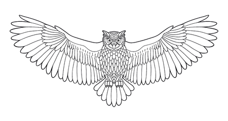 Owl. Eagle owl outline emblem in geometric hipster style. Birds. Black white hand drawn doodle. Icon design on white background. Vector line icon