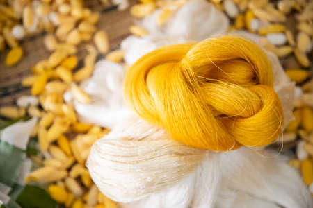 Silk threads and cocoons placed in a wooden basket Prepared for weaving into a large piece of silk Intentional And takes a long time to do