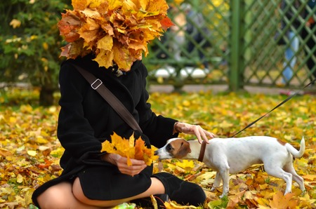 The dog sniffs autumn leaves. woman with a wreath of autumn leaves petting a dog.