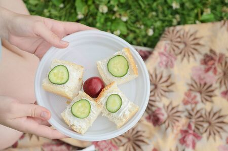 a young girl holds a plate with four small sandwiches with melted cheese ,cucumber slices and one plum in the center for dessert against the background of a summer picnic blanket.Healthy summer picnic in the Park.
