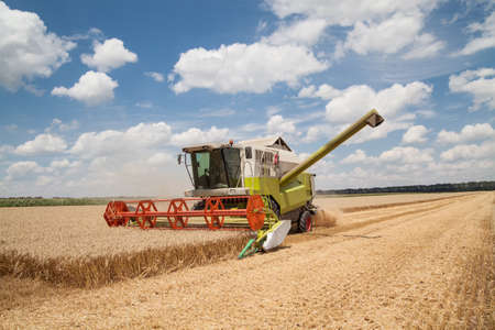 Combine working on a wheat field Stock Photo