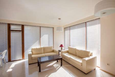 living room: modern living room. interior