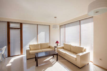 modern living room. interior
