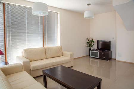 modern living: modern living room. interior