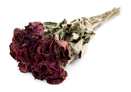 Faded dead rose bouquet isolated against a white background photo