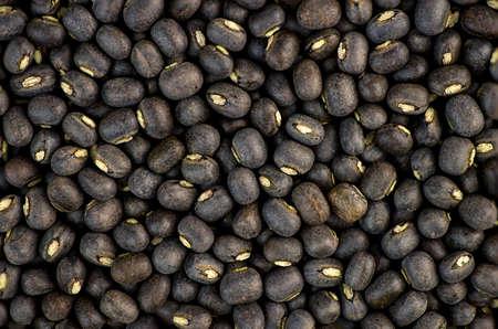 black gram: Black urad dal bean lentils
