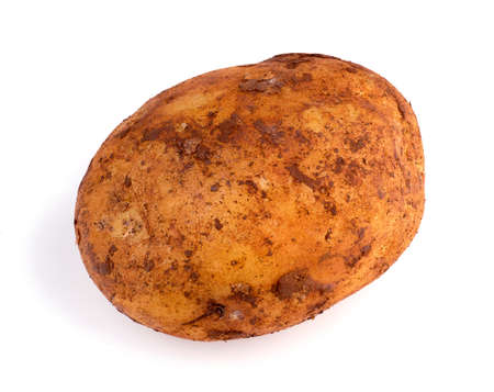 russet potato: Closeup of dirty Australian organic russet potato Stock Photo