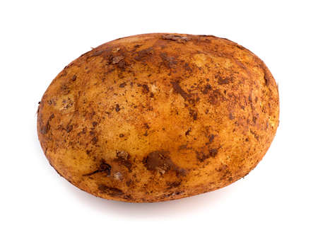 russet potato: Horizontal view of freshly picked russet potato isolated against white Stock Photo