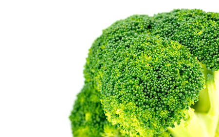 floret: Closeup of organic green broccoli floret with white copyspace