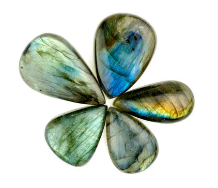 Gorgeous blue labradorite gemstones in flower star shape isolated on white Imagens - 34969517