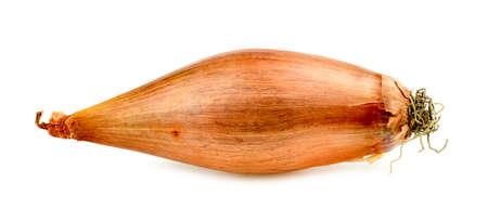 Closeup macro of beautiful echalion onion