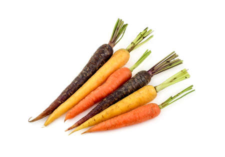 Group of vibrant variety of different colors of carrots photo