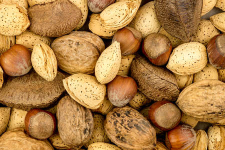 mixed nuts: Mixed nuts background texture