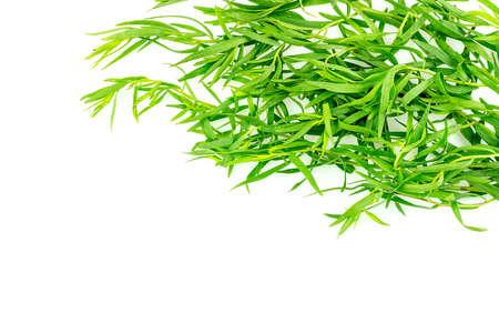 tarragon: Background texture of tarragon herb seasoning