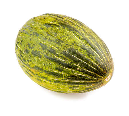 Piel de sapo christmas santa claus melon Imagens - 35668600