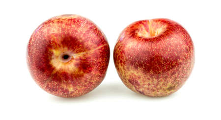Pair of pluot apricot plums Imagens