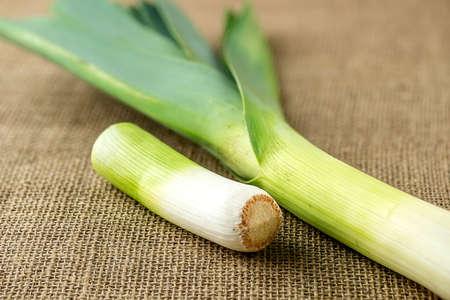 leek: Organic leek vegetable
