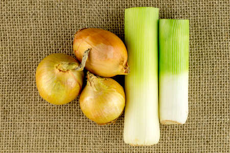 bulb and stem vegetables: Soup ingredients on rustic background Stock Photo
