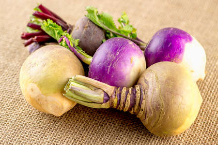 rutabaga: Variety of root vegetables including swedes, turnips and beetroot