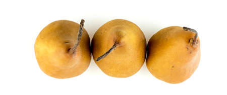 Aerial view of three bosc pears with long stems