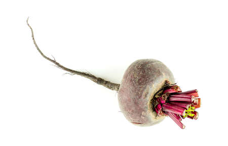 Single beetroot bulb isolated on white