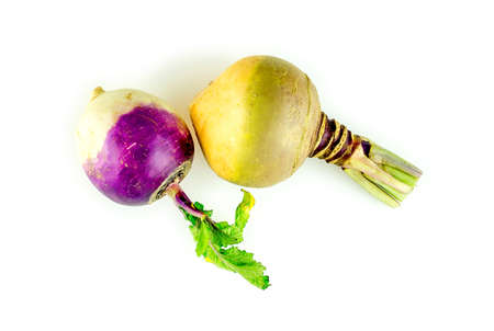 Bright naturally colored swede vegetable and purple turnip Фото со стока