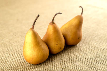 pome: Uncooked baking pears sitting in a row Stock Photo
