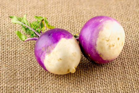 Two purple and white turnips