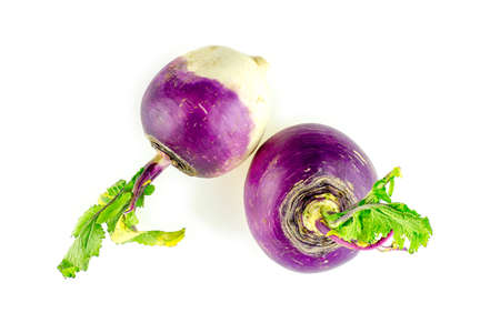 Studio isolated shot of white turnips with purple tops