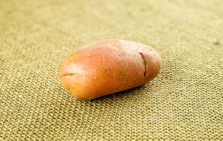red skinned: Red pontiac potato on hessian background