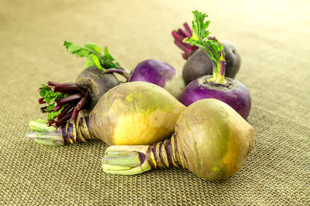 Bright naturally colored swede vegetable and purple turnip Imagens