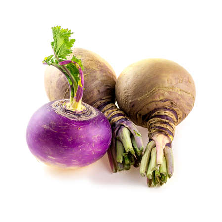 rutabaga: Small round turnip and swedish rutabaga turnips Stock Photo