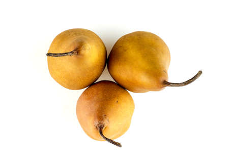 Overhead shot of brown skinned pears isolated on white