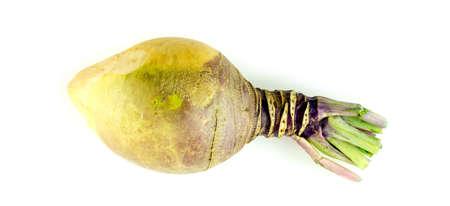 Whole garden fresh swede turnip isolated on white