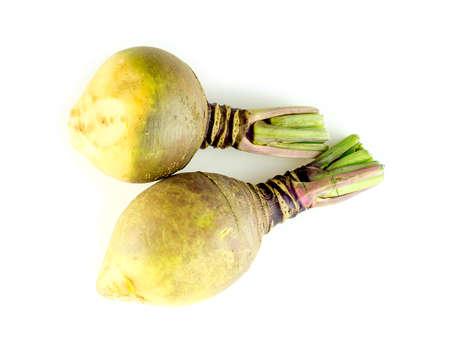 Two organic rutabaga turnips studio isolated Imagens