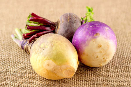 rutabaga: Three types of taproot brassica vegetables