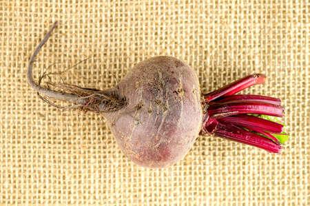 beetroot: Aerial shot of single beetroot bulb